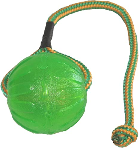 Julius-K9 59836 Swing & Fling Chew Ball - M/L, 9 cm, M, Multicolor ...