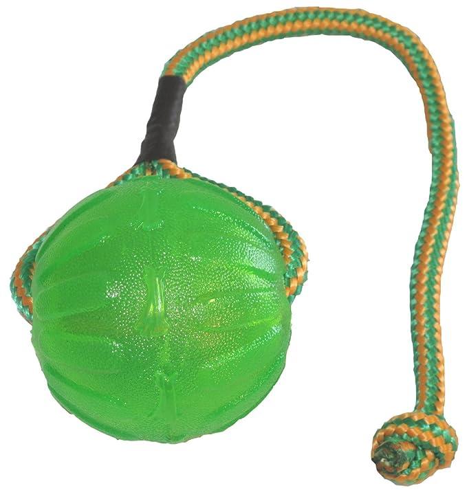 9a193e4c07ab Pet Supplies   Pet Toy Balls   StarMark Everlasting Fun Ball on a Rope Dog  Toy   Amazon.com