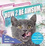 How 2 Be Awsum, icanhascheezburger.com, 1592407021
