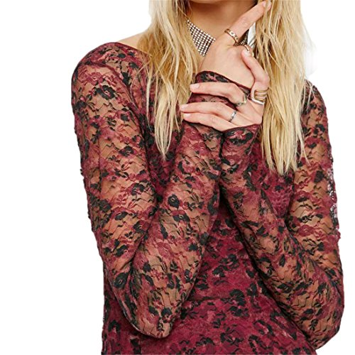 Anne Boleyn Dress (VFDFGN Women Spring Summer Vintage Elagant Floral print Lace Pattern long Sleeve tunic Dress sexy party dresses ladies chic vestidos Red M)