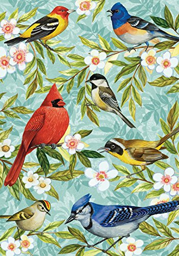 Toland Home Garden Bird Collage 12.5 x 18 Inch Decorative Sp