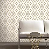 Trellis Repositionable and Removable Peel and Stick Wallpaper