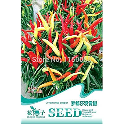 Hot Selling 20pcs Ornamental Pepper Seed, Capsicum Frutescens Seed, Bonsai Pot Plant Home Garden : Everything Else