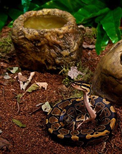 Exo-Terra-Snake-Bowl