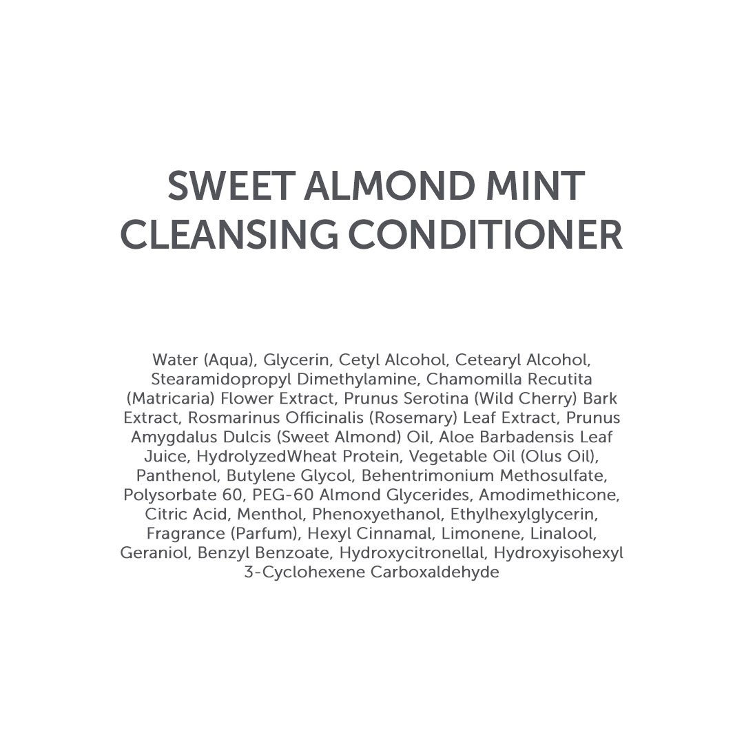 WenHairCare Sweet Almond Mint - Cleanses, Nourishes and Restores the Look of Hair, No Harsh Sulfates (16 oz)