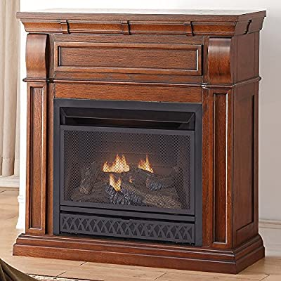 ProCom Dual Fuel Vent Free Gas Fireplace - 26,000 BTU, T-Stat Control, Chestnut Oak Finish