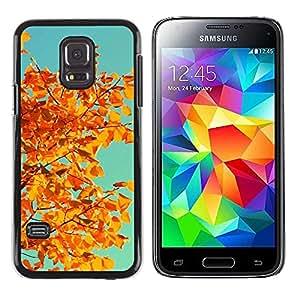 Paccase / SLIM PC / Aliminium Casa Carcasa Funda Case Cover para - Vignette Leaves Golden Brown Teal - Samsung Galaxy S5 Mini, SM-G800, NOT S5 REGULAR!