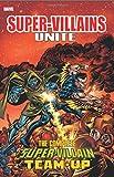 img - for Super-Villains Unite: The Complete Super-Villain Team-Up book / textbook / text book