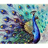 5D Diamond Painting Kits DIY Rhinestone Embroidery Cross Stitch Arts Craft for Home Wall Decor Peacock 12x16inch
