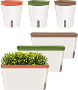 GardenBasix Self Watering Pots Window Box for Indoor Plants Set of 6 Home Garden Modern Decorative Flower Planter for All House Herbs Succulents (6, Tricolor)