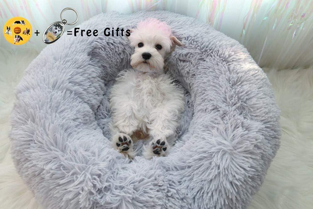 Top 10 Puppy Beds | Best Puppy Dog Beds 6