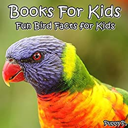 Books For Kids Fun Bird Facts For Kids Picture Books For Kids 20