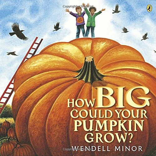 How Big Could Your Pumpkin Grow? (Halloween Pumpkin Cupcakes Pictures)