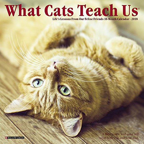 What Cats Teach Us 2018 Calendar: Life's Lessons from Our Feline Friends