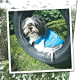 Urban Dog Wear Agatha garigol Shirt, size 8, purple For Sale
