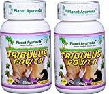 Tribulus Power (Tribulus terrestris - Pure Source of Sexual Energy for Men) - 2 bottles (each 60 capsules, 500mg) - Planet Ayurveda - US seller