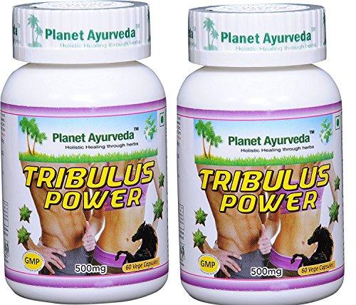 Tribulus Power (Tribulus terrestris - Pure Source of Sexual Energy for Men) - 2 bottles (each 60 capsules, 500mg) - Planet Ayurveda - US seller by Planet Ayurveda