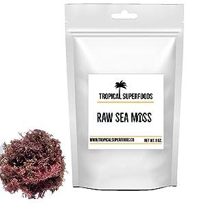 Tropical Superfoods 100 % Wildcrafted Purple Irish Sea Moss | Irish Moss | All Natural | Premium Quality | Sun dried | Organic | 92 Minerals- Purple (8oz)