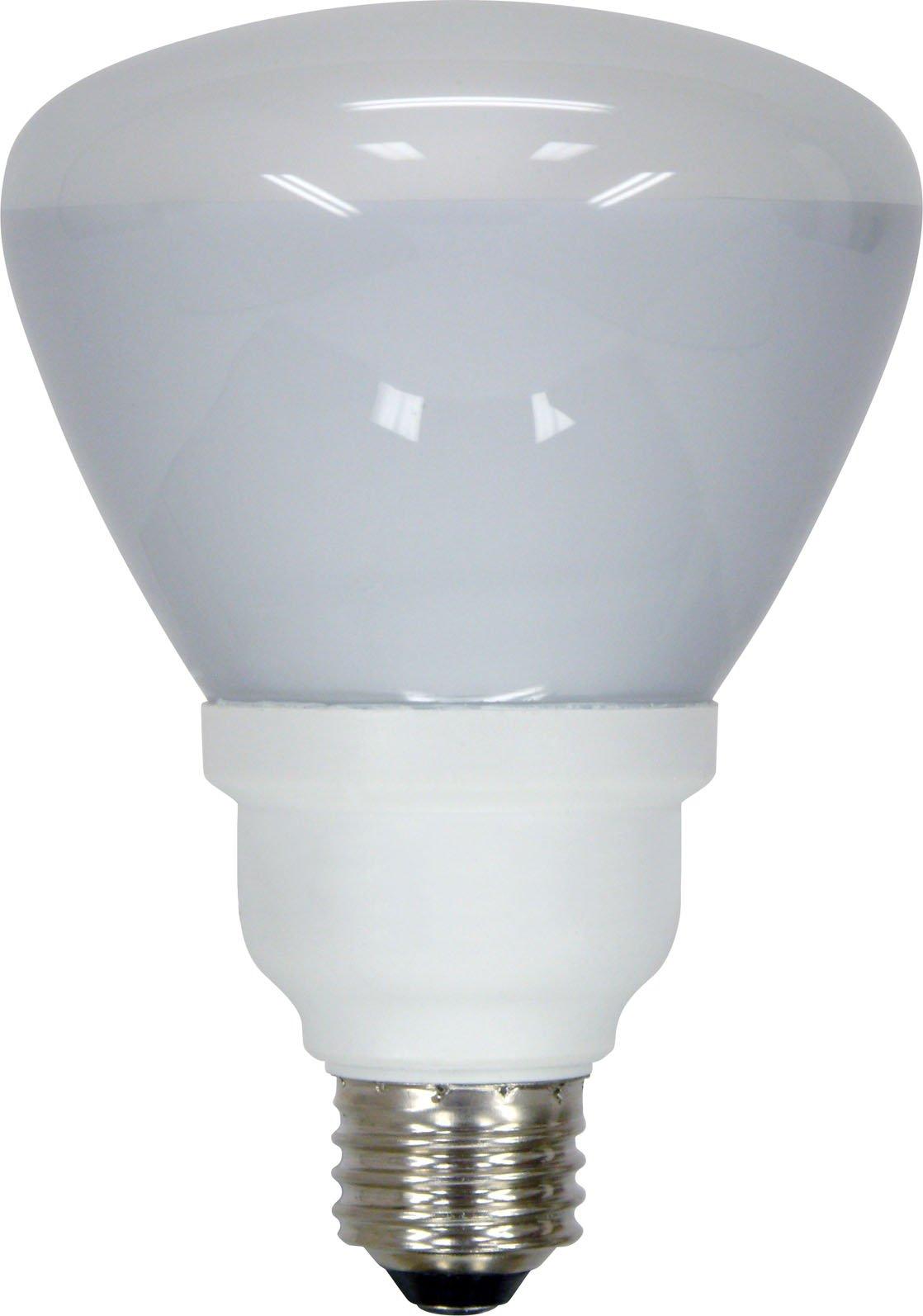 GE 21709 Energy Smart 15 Watt R30 Dimmable CFL Floodlight