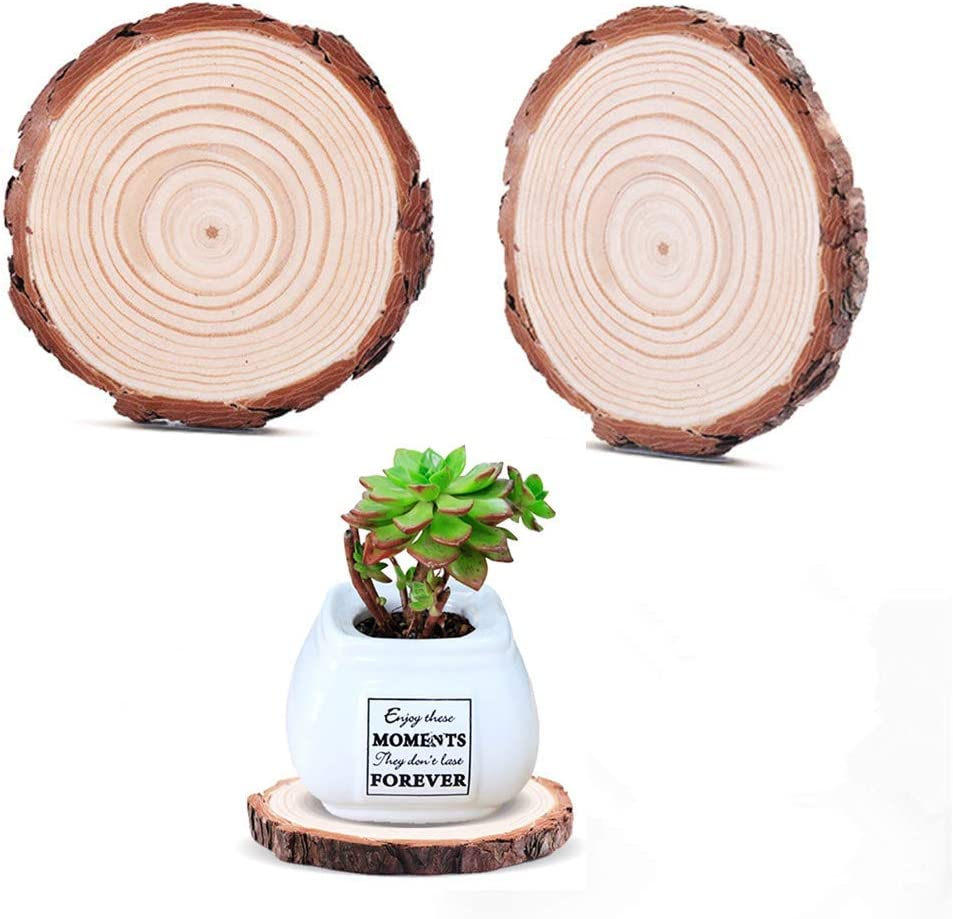 Wood Slices 10 Pcs 3.5-4 Wood Pieces Unfinished Predrilled with Hole Wooden Circles for Arts and Crafts Christmas Ornaments DIY Crafts