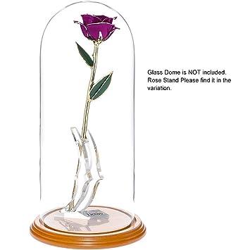 a86ef035408 ZJchao Cadeau Femme - Rose éternelle - idée Cadeau Anniversaire (Pourpre)