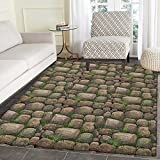Nature Rug Kid Carpet Stones Covered with Moss Rock Formation Forest Peaceful Meditation Theme Home Decor Foor Carpe 3'x5' Dark Taupe Fern Green