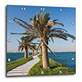 3dRose Danita Delimont - Roads - Qatar, Doha, West Bay walkway with palms - 15x15 Wall Clock (dpp_257262_3)
