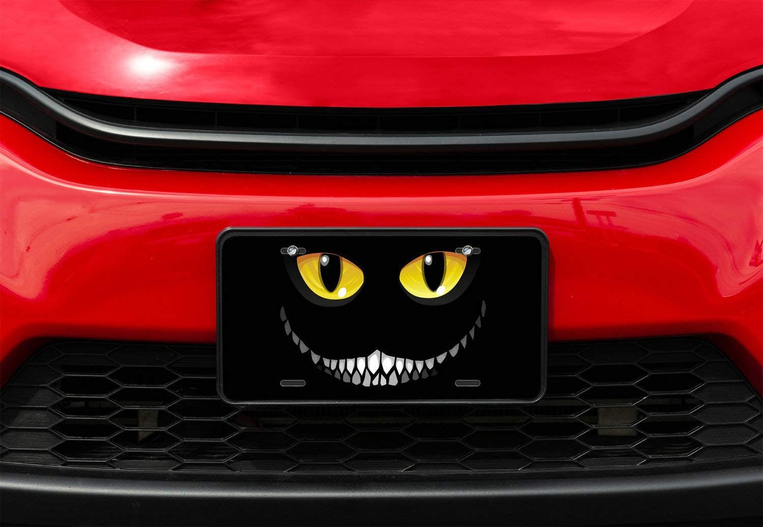 Amcove Black Cat in Darkness License Plate Glowing Eyes and a Sinister Smile Decorative Car Front License Plate,Vanity Tag,Metal Car Plate,Aluminum Novelty License Plate,6 X 12 Inch