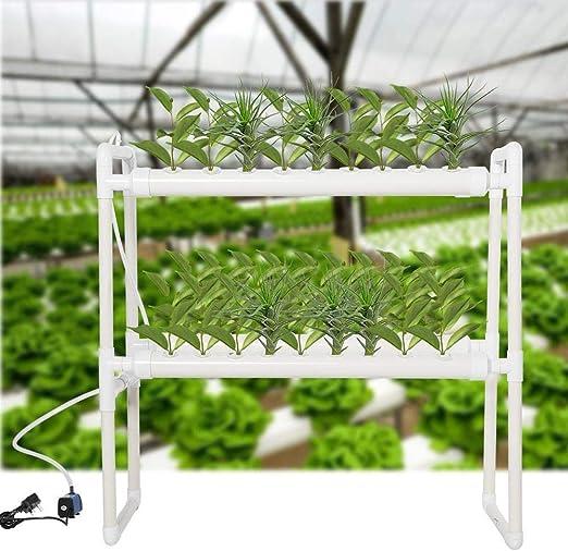 Sistema de Cultivo Hidropónico sin Suelo 36 Sitios de Plantas ...