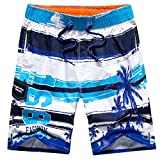 Tailor Pal Love Male Holiday Boardshorts Tropical Coconut Tree Printing Water Shorts Vacation Summer Water Beach Swim Trunks, Blue Size XL