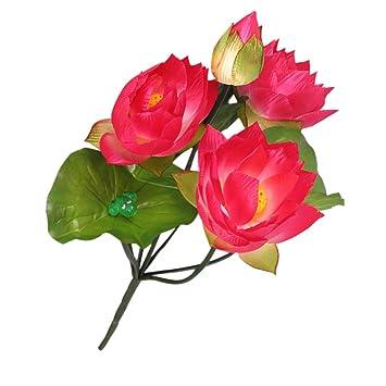 Amazoncom Monkeyjack Diy Wedding Water Lily Silk Flowers