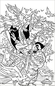 Comic book robin coloring pages ~ ROBIN SON OF BATMAN #8 ADULT COLORING BOOK VAR ED: Amazon ...