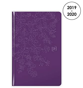 Amazon.com : Oxford Beauty 2019-2020 Agenda August to August ...