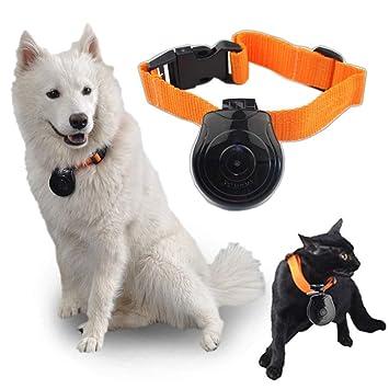 DJLOOKK Cuello del Animal doméstico Digital CAM Cámara DVR Monitor de Video para Perro Cachorro de
