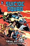 Suicide Squad (1987-1992) Vol. 1: Trial By Fire
