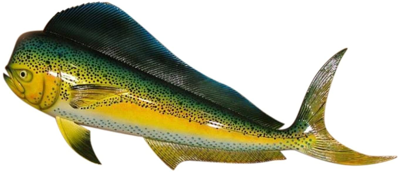 "Replica Mahi 28"" Salt Water Fishing Wall Decor"