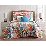 3pc Girls Colorful Tropical Quilt Full Queen Set, Floral Parrot Tropics Bedding, Pink Blue Green Yellow White, Bright Vibrant Color Flower Parrots Tropic Bird Themed Pattern Cotton