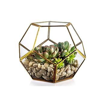 Geometrique En Verre Terrarium Pots Spherique Planteur Vase Planteur