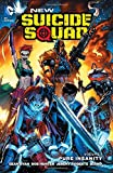 New Suicide Squad Vol. 1: Pure Insanity (The New 52).