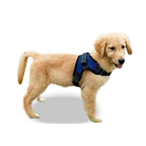 Copatchy No Pull Reflective Adjustable Dog Harness – a quality item for your dog