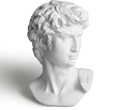 Office David Statue Wedding Greek Bust Statue of David Sculpture Figurine Replica Roman Greek Mythology Decor for Home 6 Inch LAGOM HOUSE LAGOM HOUSE Greek Statue Head Party Holiday
