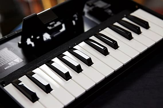 Amazon.com: Roland K-25M Keyboard for Boutique Synth Modules - New: Musical Instruments