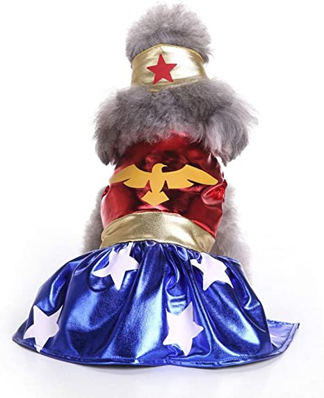 HUANZHCHP Disfraces De Halloween para Mascotas, Disfraz De Perro ...