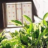 MARS HYDRO TS 600W LED Grow Light 2x2 ft Sunlike