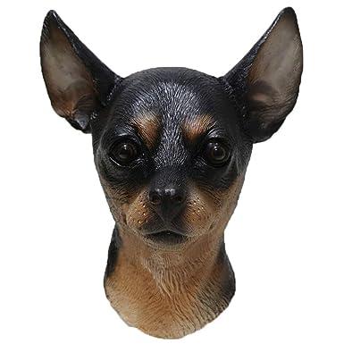 Amazon.com: Mascarilla de látex para perro, disfraz de ...