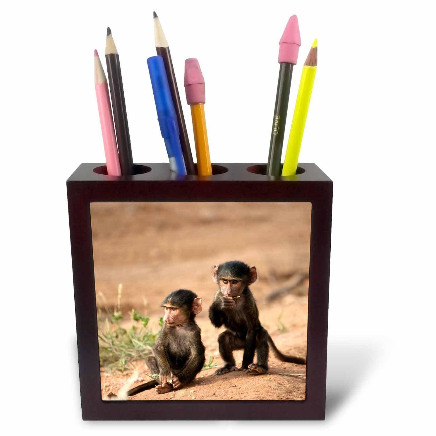 3drose Ph _ 69954 _ 1オリーブBaboon primates、Masai Mara GR、Kenya jmc0184-joeとメアリーアンmcdonald-tileペンホルダー、5インチ B00JSLPU3Y