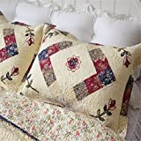 Jameswish 2-Piece Embroidered Pillow Shams 100% Cotton Filling Colorful Floral Standard Size 20x28inch