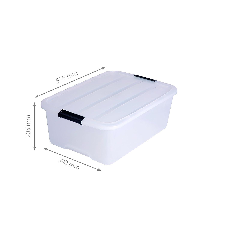 Iris - Juego de cajas con Comercio y tapa, sistema de ordenación, plástico, tapa Transparente, Set de 3 (Medium): Amazon.es: Hogar