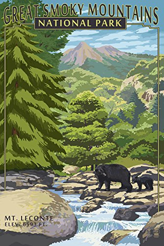 - Great Smoky Mountains National Park, Tennesseee - Leconte Creek and Mt. Leconte (9x12 Art Print, Wall Decor Travel Poster)