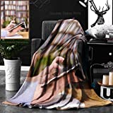 Ralahome Unique Custom Double Sides Print Flannel Blankets Hands Typing On Tablet In College Class Super Soft Blanketry for Bed Couch, Twin Size 60 x 80 Inches